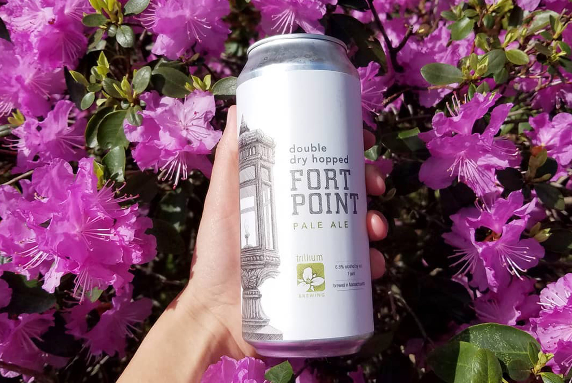 DDH Fort Point from Trillium, one of the best breweries in Boston